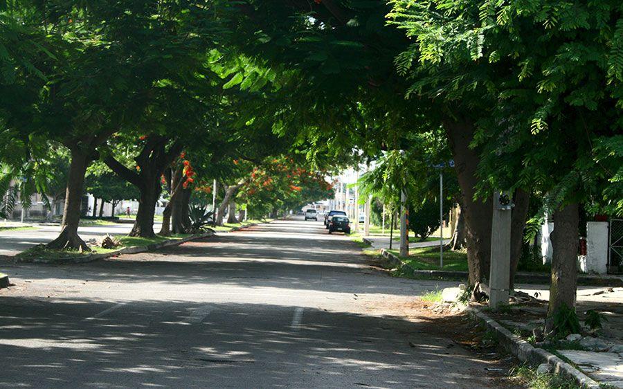 avenida-colonia-aleman