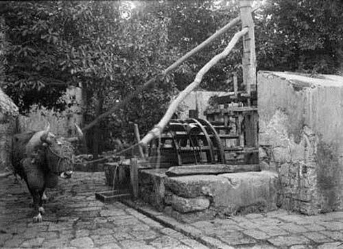 Pasajes-en-la-historia-de-la-Hacienda-Uxmal-42