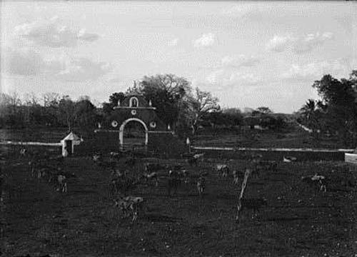 Pasajes-en-la-historia-de-la-Hacienda-Uxmal-43