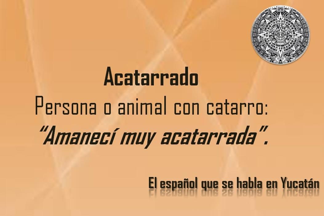 """ACATARRADO: """"AMANECÍ MUY ACATARRADA"""""""