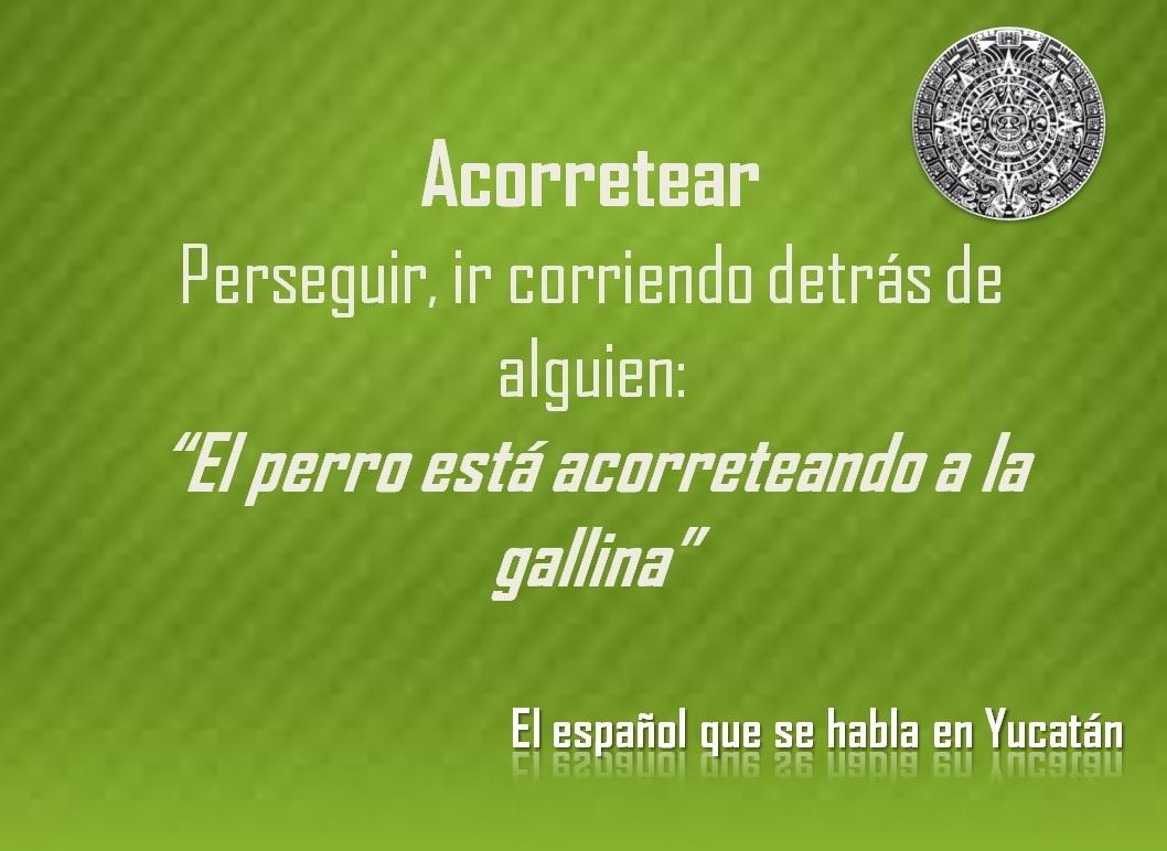 """ACORRETEAR: """"EL PERRO ESTÁ ACORRETEANDO A LA GALLINA"""""""