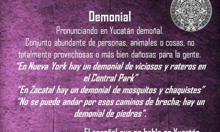 """DEMONIAL: """"EN ZACATAL HAY UN DEMONIAL DE MOSQUITOS Y CHAQUISTES"""""""