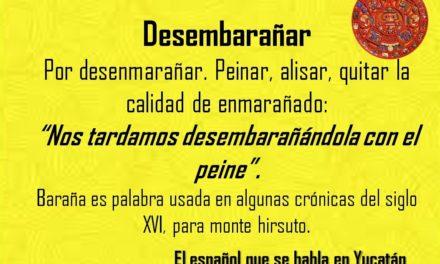 """DESEMBARAÑAR: """"NOS TARDAMOS DESEMBARAÑÁNDOLA CON EL PEINE"""""""