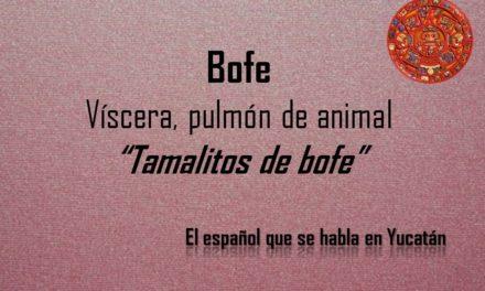"""BOFE: """"TAMALITOS DE BOFE"""""""