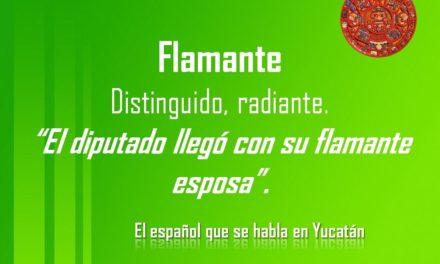 """FLAMANTE: """"EL DIPUTADO LLEGÓ CON SU FLAMANTE ESPOSA"""""""