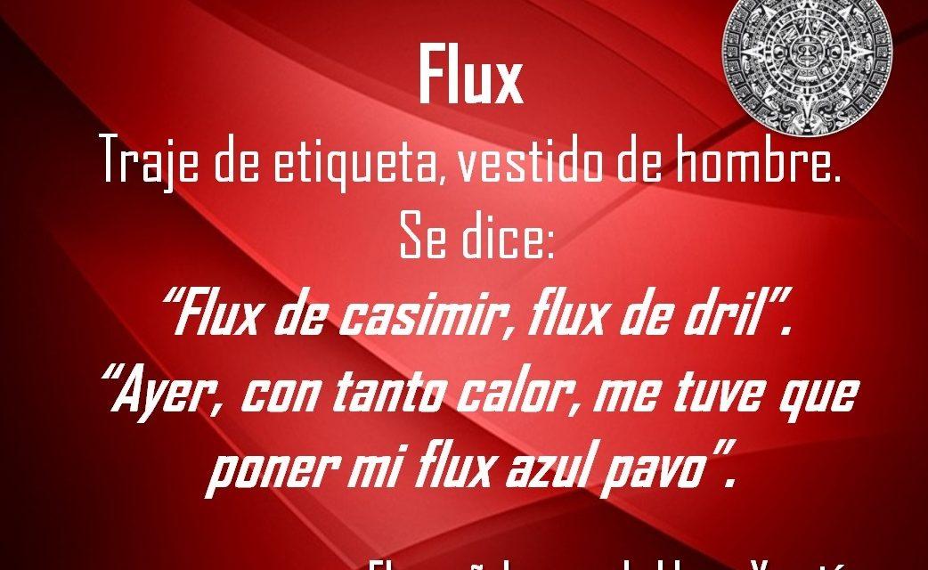 "FLUX: ""ME TUVE QUE PONER MI FLUX AZUL PAVO"