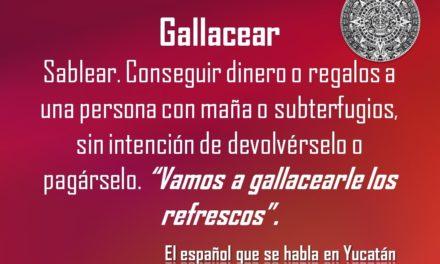 """GALLACEAR: """"VAMOS A GALLACEARLE LOS REFRESCOS"""""""