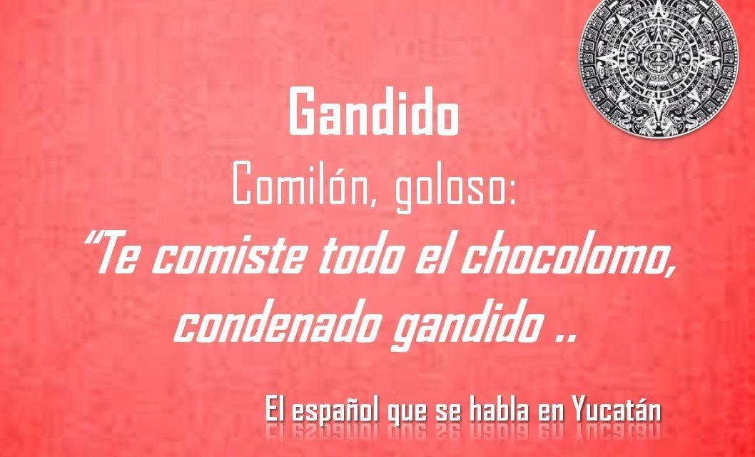 """GANDIDO: """"TE COMISTE TODO EL CHOCOLOMO, CONDENADO GANDIDO"""""""