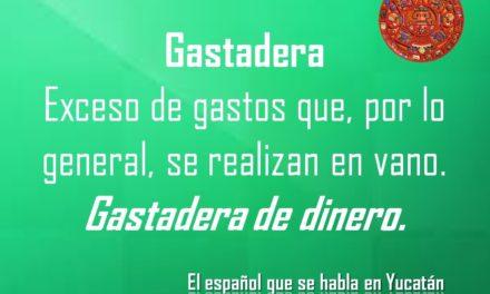 GASTADERA: GASTADERA DE DINERO