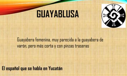 """GUAYABLUSA: """"GUAYABERA FEMENINA PERO MÁS CORTA Y CON PINZAS TRASERAS"""""""