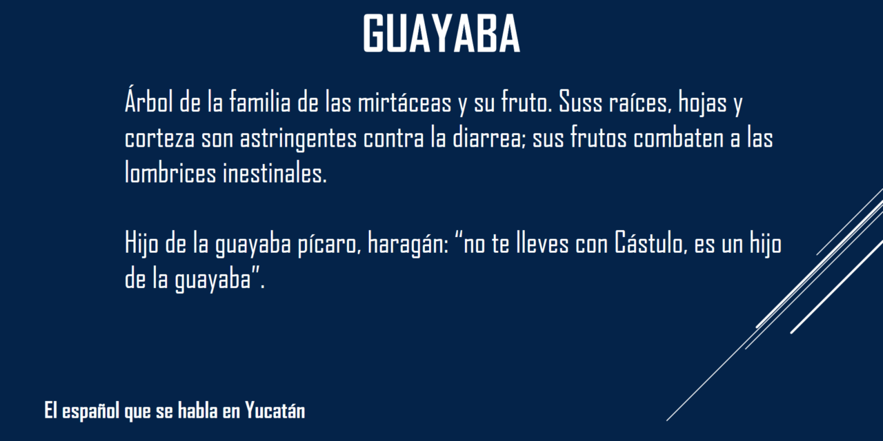 """GUAYABA: """"NO TE LLEVES CON CASTULO, ES UN HIJO DE LA GUAYABA"""""""