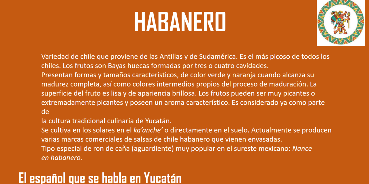"""HABANERO: """"ES EL MAS PICOSO DE TODOS LOS CHILES"""""""