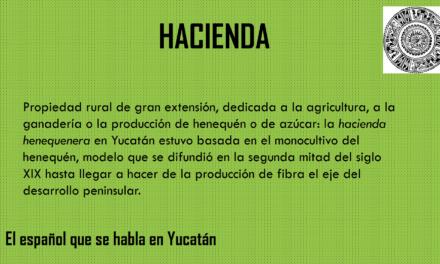 """HACIENDA: """"PROPIEDAD RURAL DE GRAN EXTENSIÓN"""""""