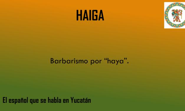 """HAIGA: """"BARBARISMO PARA HAYA"""""""