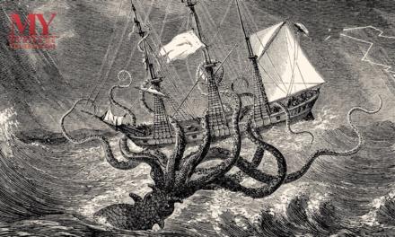 Pulpos y Calamares